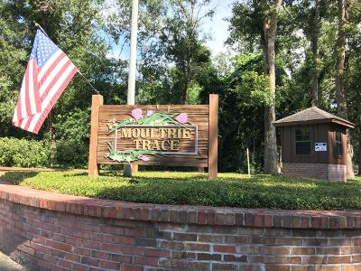 St. Johns County Residential Lots & Land For Sale: 4277 Wicks Branch Rd