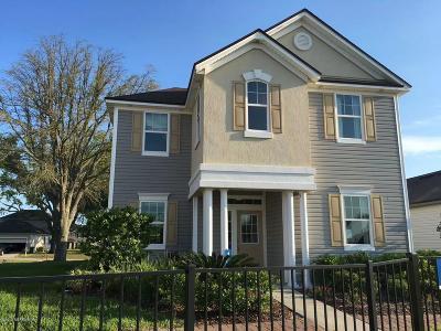 Orange Park, Fleming Island Single Family Home For Sale: 3074 Holly Grove Ln