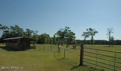 St. Johns County Farm For Sale: 1790 Poa Boy Farms Rd