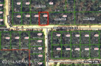 Interlachen FL Residential Lots & Land For Sale: $2,100