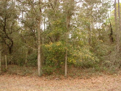 Hawthorne FL Residential Lots & Land For Sale: $14,900
