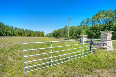St Johns Residential Lots & Land For Sale: 5320 County Road 210 West