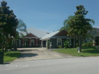 Jacksonville Single Family Home For Sale: 13882 White Heron Pl