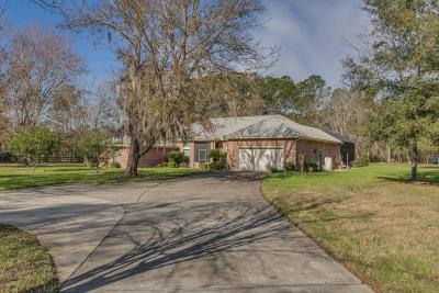 St. Johns County Single Family Home For Sale: 1570 Scottridge Ln