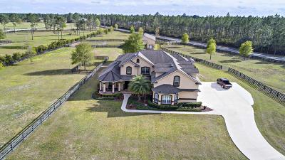 Duval County Single Family Home For Sale: 14678 Diamond Ranch Dr
