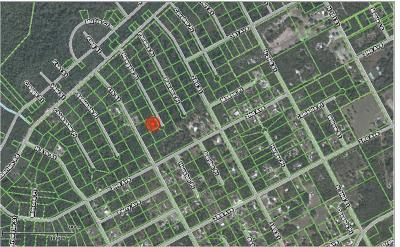 Satsuma FL Residential Lots & Land For Sale: $2,800