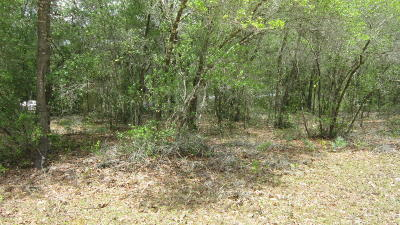 Interlachen FL Residential Lots & Land For Sale: $3,200