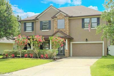 Orange Park Single Family Home For Sale: 679 Wakeview Dr