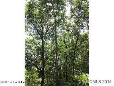 St Augustine Residential Lots & Land For Sale: 521 County Road 13 S