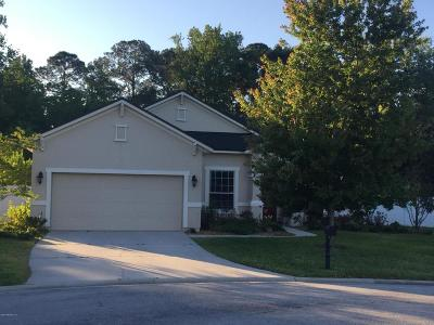 Fleming Island Single Family Home For Sale: 1417 Talon Ct