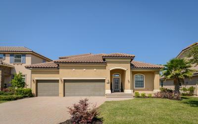 Single Family Home For Sale: 169 Spanish Marsh Dr