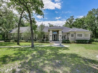Jacksonville Single Family Home For Sale: 2010 Orange Picker Rd
