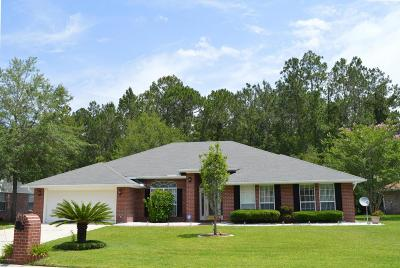 Duval County Single Family Home For Sale: 10451 McGirts Creek Dr