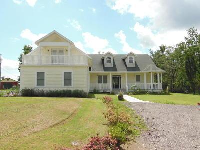 Middleburg Single Family Home For Sale: 1717 Landward Ln