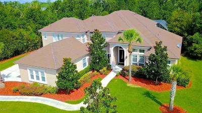 Fleming Island Single Family Home For Sale: 1226 Salt Marsh Ln