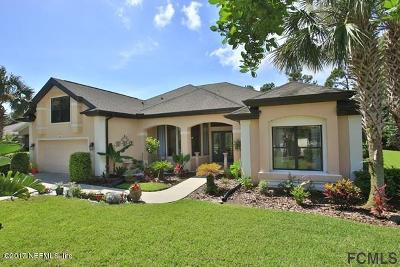 Palm Coast Single Family Home For Sale: 62 Southlake Dr