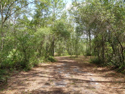 Residential Lots & Land For Sale: 920 State Road 26