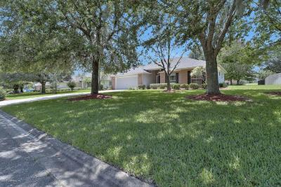 Village Green Single Family Home For Sale: 521 Cunningham Hollow Way
