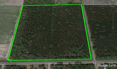 St. Johns County Residential Lots & Land For Sale: J Flake Rd
