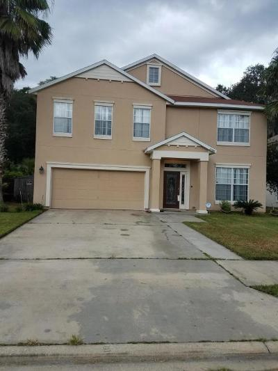 Clay County Single Family Home For Sale: 2784 Wood Stork Trl