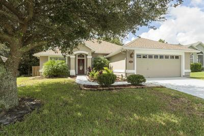 Jacksonville Single Family Home For Sale: 11434 Chase Meadows Dr South