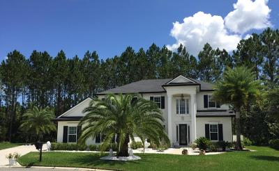 Orange Park Single Family Home For Sale: 1685 Wild Dunes Cir
