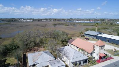 St Augustine Single Family Home For Sale: 227 Riberia St