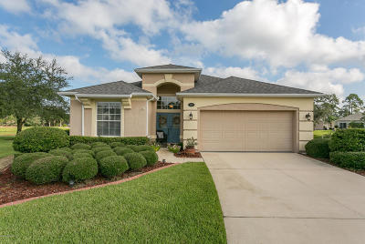 Clay County Single Family Home For Sale: 1219 Fairway Village Dr