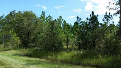 St. Johns County Residential Lots & Land For Sale: 4355 Wanda St