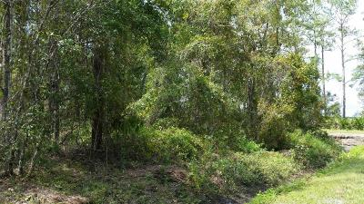 St. Johns County Residential Lots & Land For Sale: 9615 Light Ave