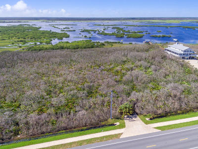 St. Johns County Residential Lots & Land For Sale: 8175 A1a S