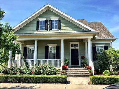 St. Johns County Single Family Home For Sale: 382 Kendall Crossing Dr