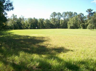 Fleming Island Commercial For Sale: 1843 County Road 220