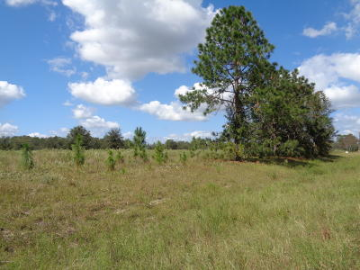 Interlachen FL Residential Lots & Land For Sale: $85,900