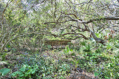 Residential Lots & Land For Sale: Third St