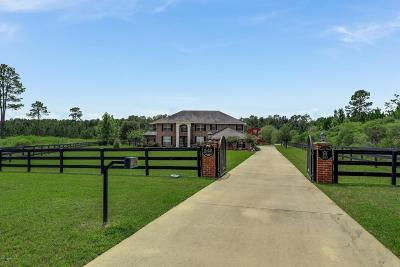 St Augustine Single Family Home For Sale: 243 Towers Ranch Dr