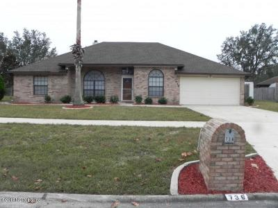 Orange Park Single Family Home For Sale: 736 Sandlewood Dr