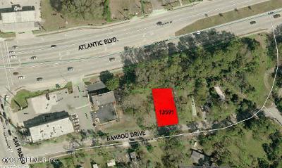 Jacksonville, Jacksonville Beach Commercial For Sale: 13591 Bamboo Dr