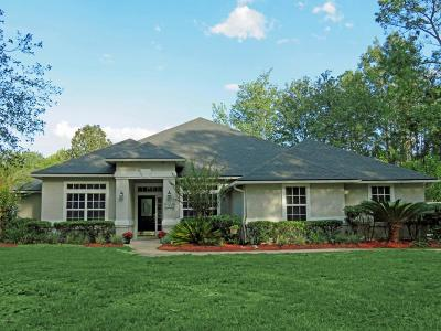 Jacksonville, St Johns Single Family Home For Sale: 294 Edgewater Branch Dr