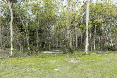 Atlantic Beach, Fernandina Beach, Jacksonville Beach, Neptune Beach, Ponte Vedra Beach Residential Lots & Land For Sale: 112 King Sago Ct