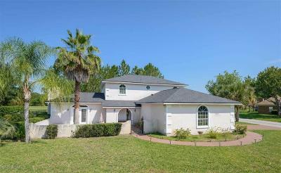 St. Johns County Single Family Home For Sale: 4413 Eagle Creek Ct