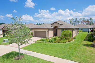 Ponte Vedra Beach Single Family Home For Sale: 213 River Run Blvd