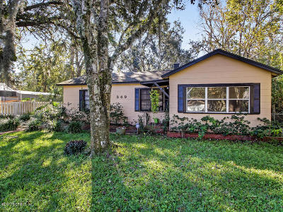 St Augustine Single Family Home For Sale: 349 Abbey Ave
