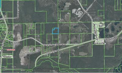 Interlachen FL Residential Lots & Land For Sale: $36,500