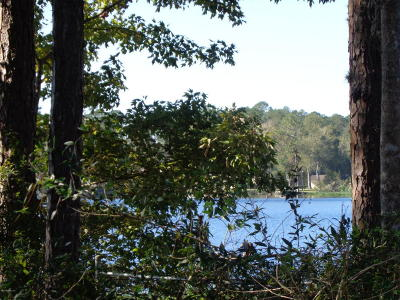 Interlachen FL Residential Lots & Land For Sale: $59,000
