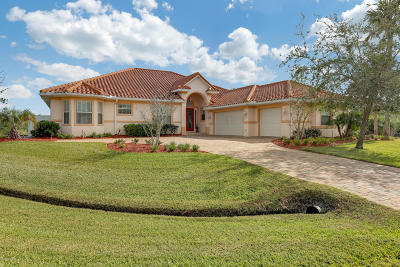St Augustine Single Family Home For Sale: 141 Pelican Reef Dr