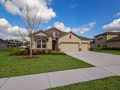 Clay County Single Family Home For Sale: 4272 Great Egret Way