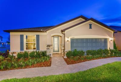 Single Family Home For Sale: 21 Lago Vista Ct