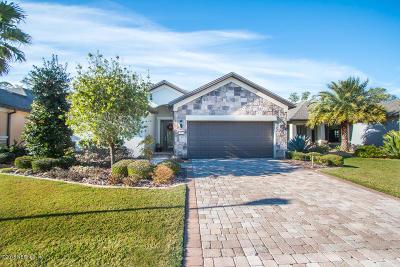Ponte Vedra Beach Single Family Home For Sale: 55 Hammocks Landing Dr