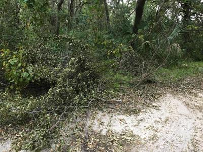 St Augustine Residential Lots & Land For Sale: 1093 Collier Blvd
